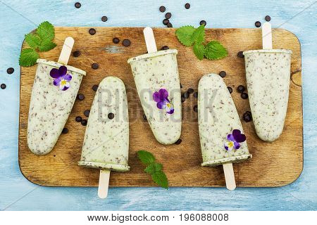 Homemade mint ice-cream with chocolate chips on a simple background. Top View