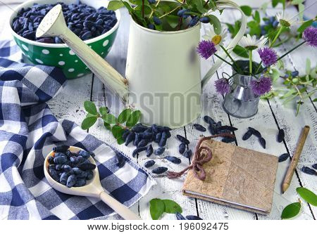 Rural still life with honeysuckle berry, notebook and vintage watering can. Beautiful summer vintage background, vegetarian and vegan concept, rural still life with berry and flowers