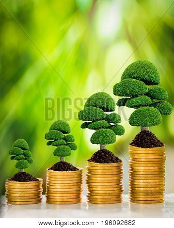 gold coins with tree growth collect on white wooden table with nature blurred background and bokeh