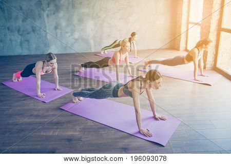 Abs Plank Exercise. Five Concentrated Sporty Girls Are Doing Plank Work Out To Keep Abs Fit, Wearing