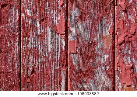The vertical panels on the old weathered barn show peeling.