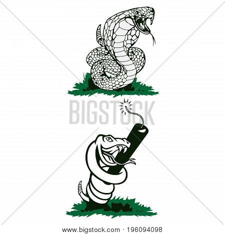 Vector isolated illustrations aggressive venomous snakes. Figure dangerous reptiles cobra and rattlesnake with tongue and poisonous fangs. Drawing engraving Vector illustration eps8. eps10