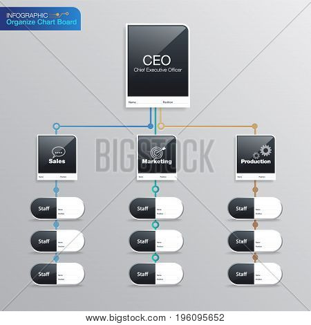 organize chart infographic. Business structure. Name Board Position Vector design.