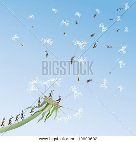 Ants fly away on dandelions in unexplored. Vector.