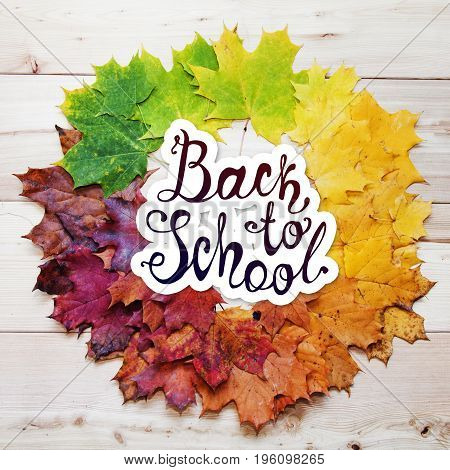 Back To School. Autumn Round Frame