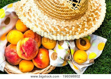 Apricots and peaches in a wooden basket with a tablecloth and straw hat. Fruit on green fresh grass in the garden.