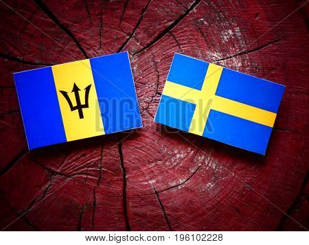 Barbados Flag With Swedish Flag On A Tree Stump Isolated