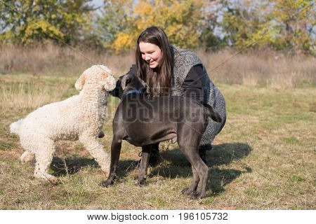 Girl and her dogs during a game