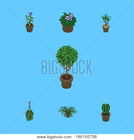Isometric Houseplant Set Of Plant, Peyote, Blossom And Other Vector Objects