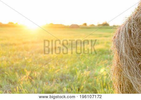 Sheaf of hay on the field at sunset Tambov region summer sunset evening