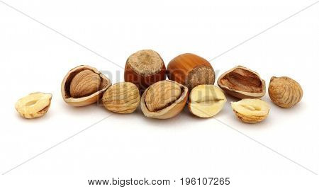 Hazelnut group many isolated on white background.