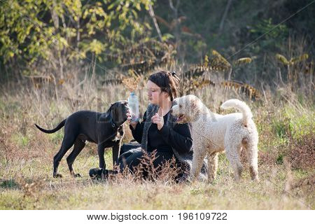 Girl with her dogs during obedience training