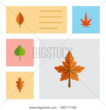 Flat Icon Maple Set Of Linden, Alder, Aspen And Other Vector Objects