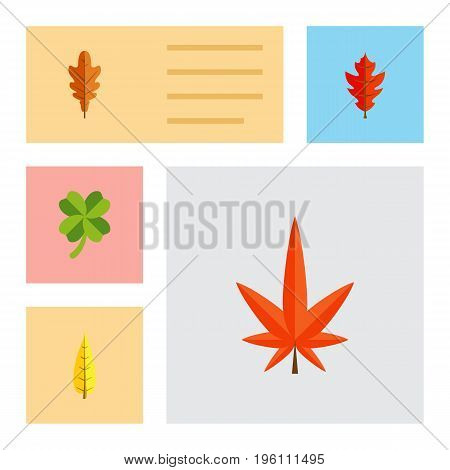 Flat Icon Maple Set Of Leafage, Frond, Aspen And Other Vector Objects