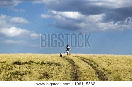 Girl Running With A Dog On Country Road In Summer Nature.
