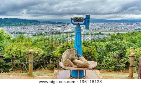 Top view of blurred Kyoto from Arashiyama mountain with monkeys and binocular, cloudy day, focus on foreground