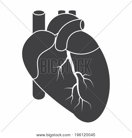 Cardiology icon with human heart, vector silhouette