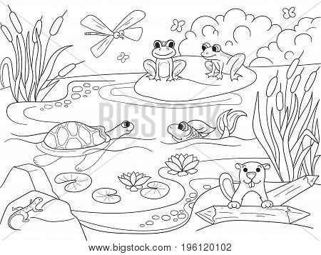 Wetland landscape with animals coloring book for adults vector illustration. Anti-stress for adult. Black and white lines insect, frog, cane, dragonfly, fish, water lily, water Lace pattern nature