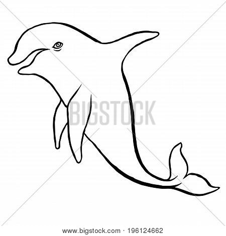 Dolphin doodle sketch hand drawing vector paint