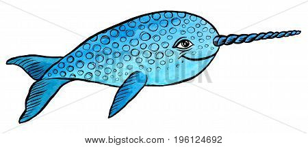 Illustration of narwhal  -  hand drawing vector paint