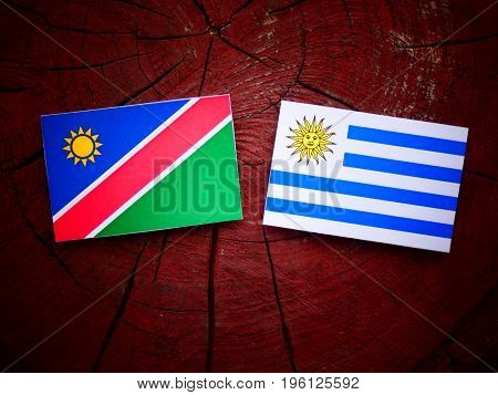 Namibian Flag With Uruguaian Flag On A Tree Stump Isolated