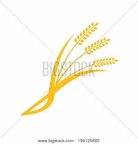 Concept for organic products label, harvest and farming, grain, bakery, healthy food. Simple wheats ears icons and wheat design elements, organic wheats local farm fresh food, bakery.