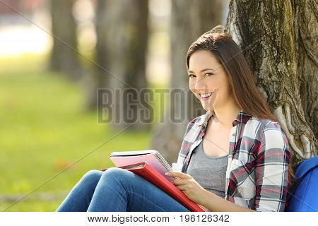 Satisfied student posing looking at you sitting on the grass in a park
