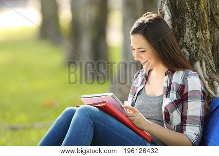 Student studying reading notes outside sitting on the grass in a park