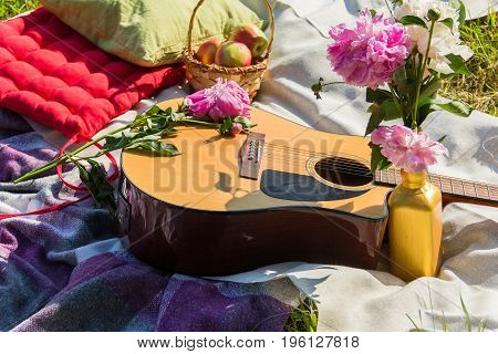 Picnic in the outdoor with guitar apples pillows and peonies in the vase