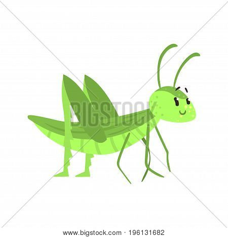 Cute cartoon green grasshopper character vector Illustration isolated on a white background