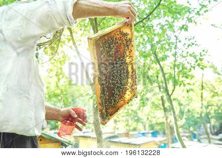 Low angle shot of a beekeeper spraying honeycomb working in his apiary.
