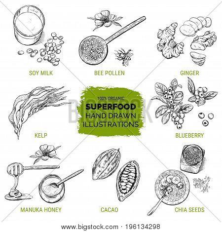 Superfood, hand drawn sketch, vector illustration, natural design.
