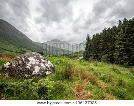 A windswept and overcast view of the Glen Nevis valley with Ben Nevis mountain in the distance.