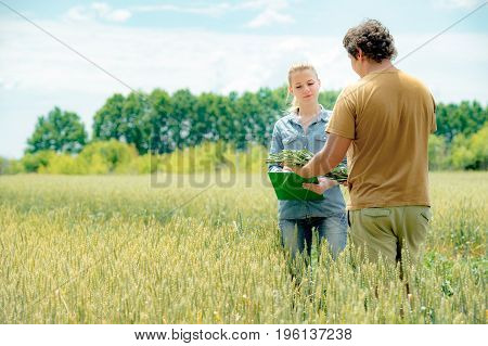 Two farmers negotiating about future crop and write down the results of the meeting