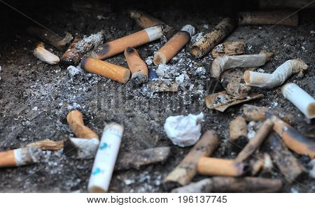 Cigarette Waste,Lots of cigarette butts in the dump
