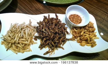 traditional chinese food with fried insects hoppers worms and bees on a white rectangular dish with spicy chili pepper