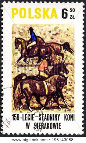 UKRAINE - CIRCA 2017: A postage stamp printed in Poland shows Breaking in horses from the series Sierakov Horse Stud Farm circa 1980