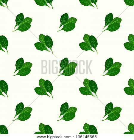 Seamless Background Image Colorful Vegetable Food Ingredient Spinach
