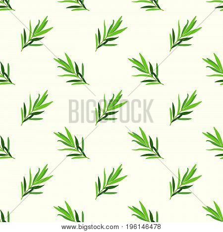 Seamless Background Image Colorful Vegetable Food Ingredient Tarragon