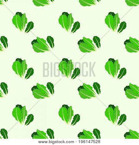 Seamless Background Image Colorful Vegetable Food Ingredient Romaine Lettuce
