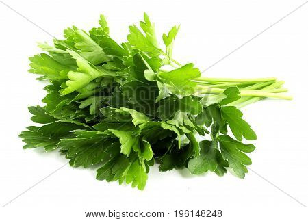 parsley bunch isolated on white background, tasty, natural