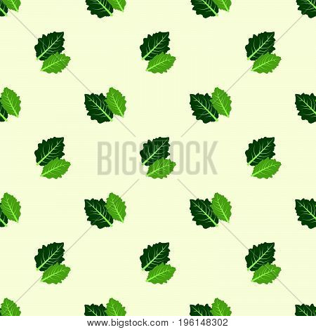 Seamless Background Image Colorful Vegetable Food Ingredient Butterhead