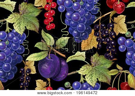 Seamless botanical pattern with grapes plum red and black currant cherry on black background. Vintage. Victorian style. Vector illustration. For kitchen design food packaging paper interior.