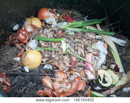 The Contents Of Compost Heap Bin Decaying