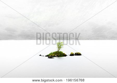 Small tree on small island sits in centre of a Scottish loch. Surrounded  by fog and claim water