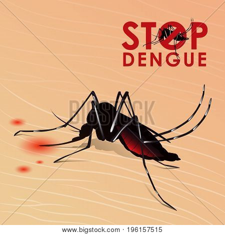 Stop Dengue fever with Mosquito sucking blood on skin vector design