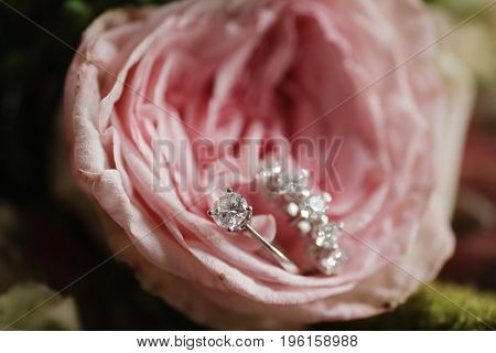 Bridal Ring, Diamond Rings, Wedding Preparation, Flowes