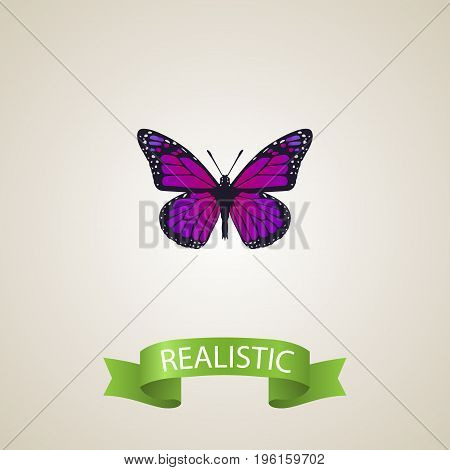 Realistic Violet Wing Element. Vector Illustration Of Realistic Purple Monarch  Isolated On Clean Background