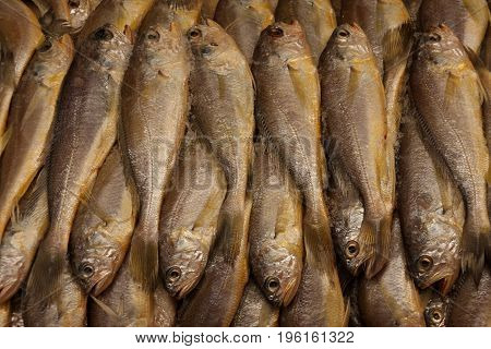 Group of fish in seafood market for use as background.