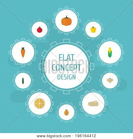 Flat Icons Gourd, Root, Pawpaw And Other Vector Elements